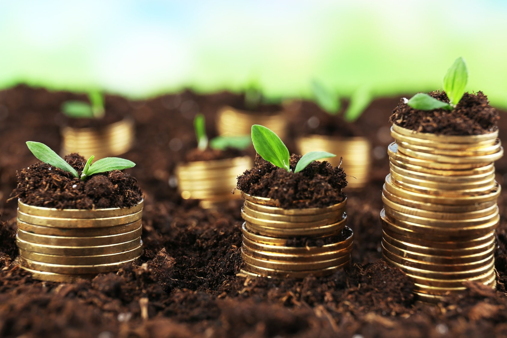 Why Going With the Cheapest Environmental Firm May Hurt You in the Long Run