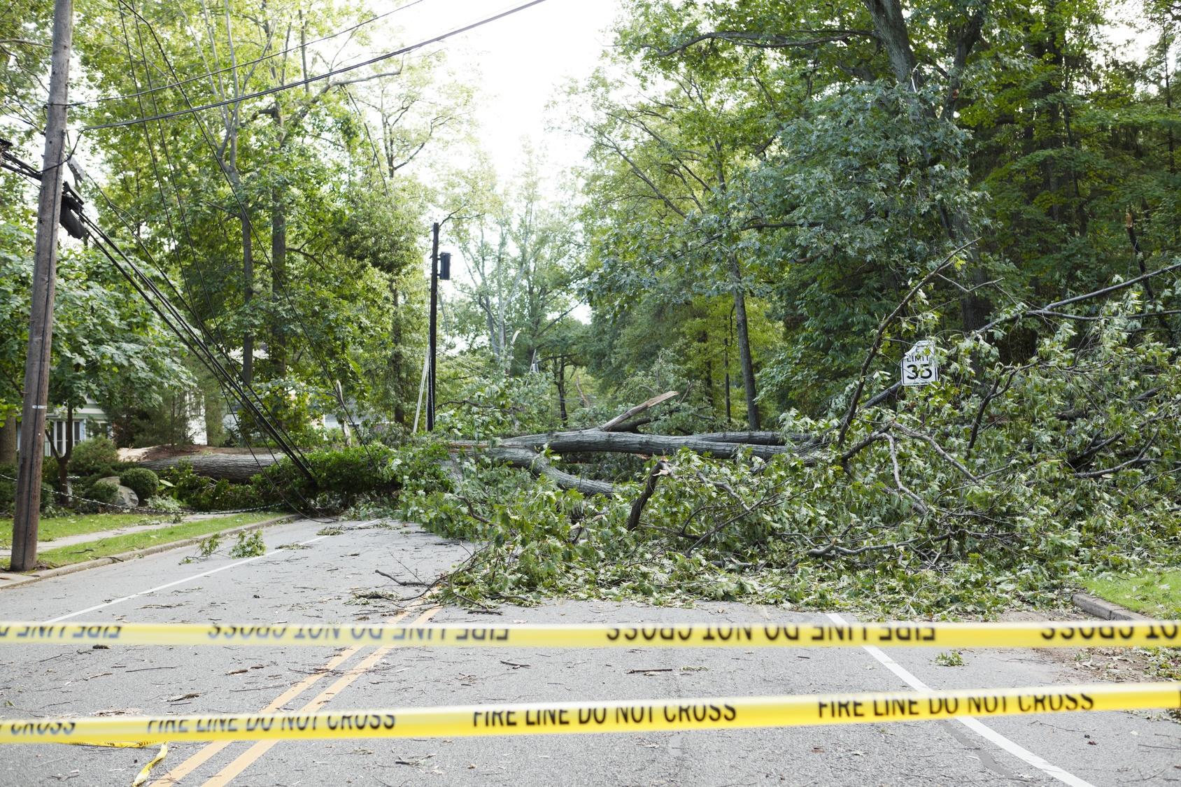 post_hurricane_dangers.jpg